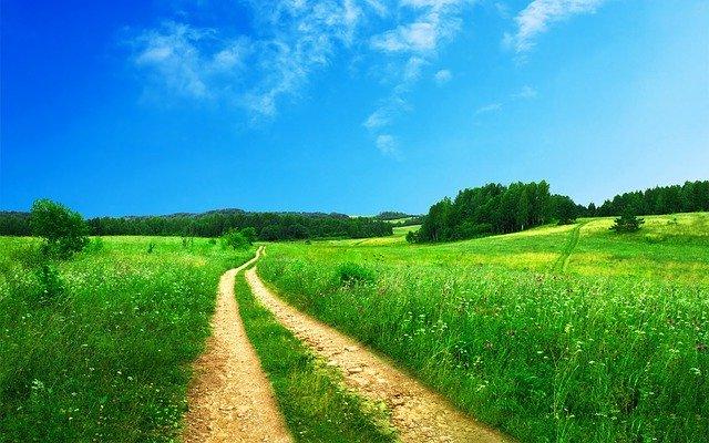 緑の多い風景