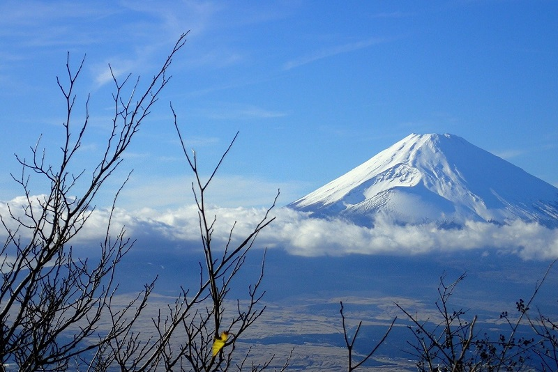 箱根から見る富士山